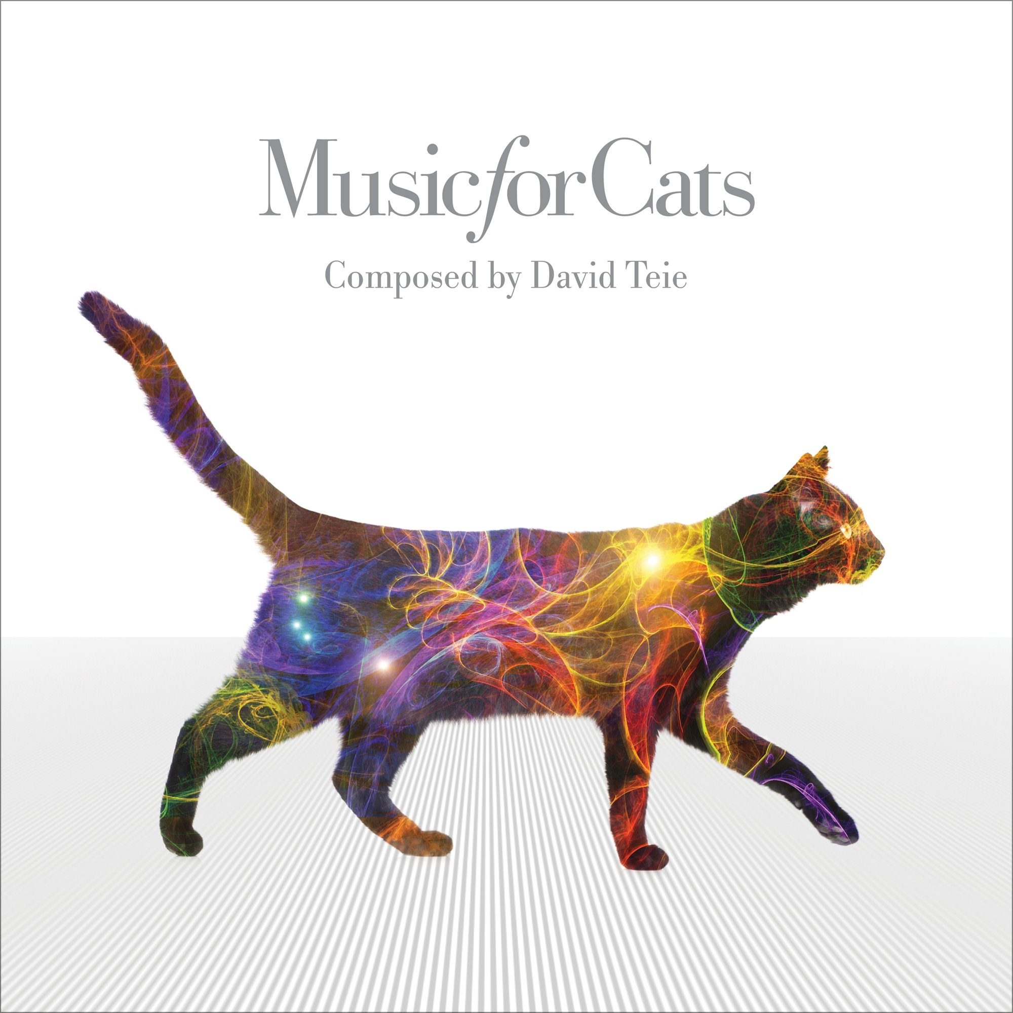 MusicForCats-VR20160815-2000x2000x72